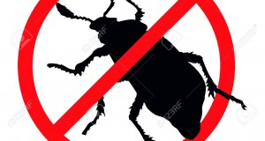 15939689-Beetle-silhouette-isolated-Insect-repellent-emblem-Stock-Vector